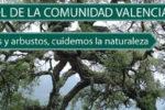 Día del Árbol en la Comunidad Valenciana