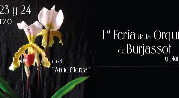 Feria Orquídeas de Burjassot