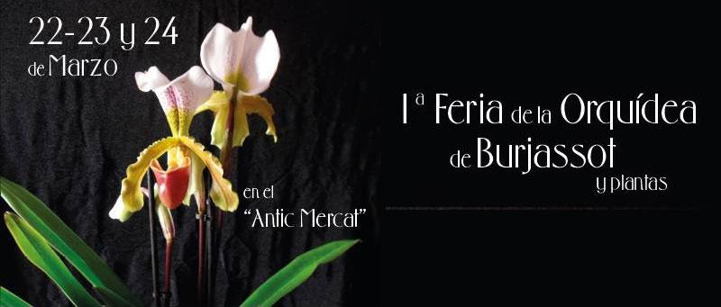 Feria de las Orquídeas de Burjassot 2019