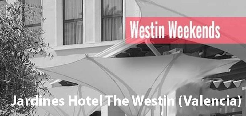 Conciertos de verano del Hotel The Westin