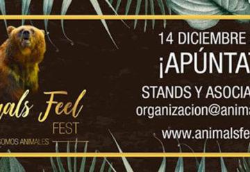 Animal Feel Fest 2019