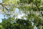 Visitas guiadas al Jardín Botánico de la Universidad de Valencia