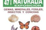 Exposición Naturalia 2020